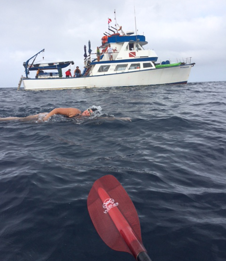 strong-currents-catalina-channel-swim